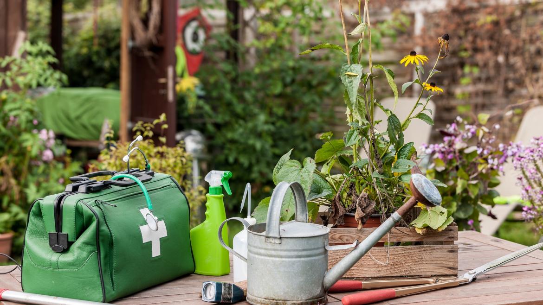 Trattamenti fitosanitari: il tuo giardino sempre al top