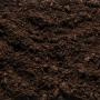Come nutrire le tue piante con i migliori concimi organici e naturali